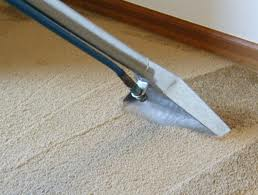 Carpet Cleaning Service Austin
